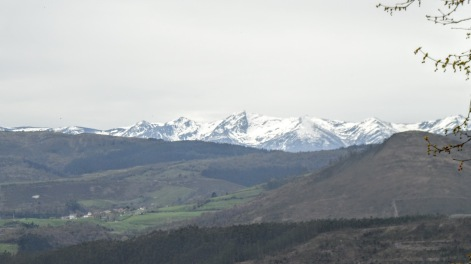 First glances of snow capped mountains as I left Santander