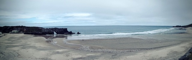 Grizzly Beaches - I wonder how the surfing is?