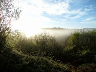Mist hangs around O'Corona