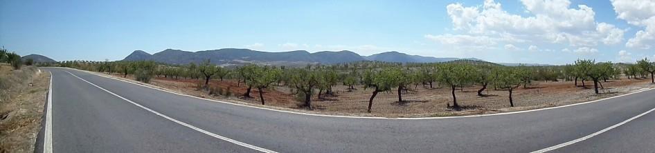 sierra 4