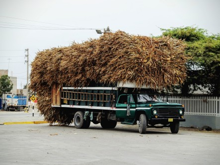 There was a guy sitting on top of all that hay on the Panamerican